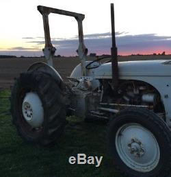 Ferguson Grey Fergy T20 Ted20 Vintage Tractor Original 1953 & V5 Not Massey 35